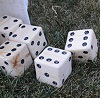How I Made a Yard Dice Game